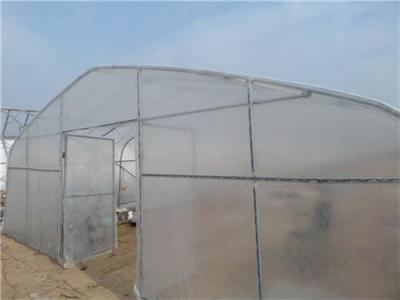 河南草莓温室大棚建设 育苗温室日光大棚