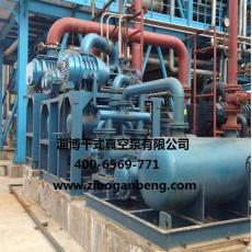 DZJ-3750气冷罗茨泵