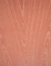 新西兰智阁板材-2016年10大免漆板板材