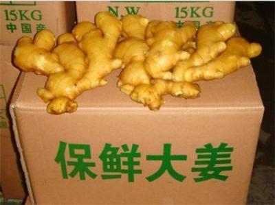 山东大姜黄姜鲜姜供应
