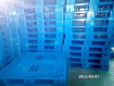 龍巖塑料托盤生產廠 龍巖塑料棧板價格