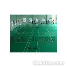 塑膠羽毛球地板生產